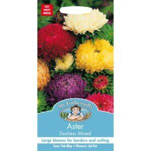 Mr Fothergill's Aster Duchess Mixed Seeds