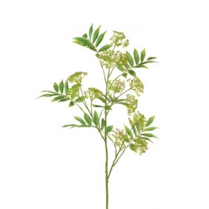 Floralsilk Anethum Spray (117cm)