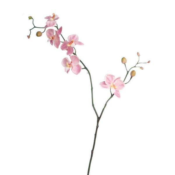 Floralsilk Mini Pink Phalaenopsis Stem (80cm)