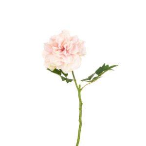 Floralsilk Blush Pink Peony Stem (62cm)