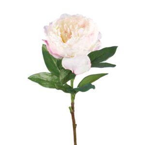 Floralsilk Garden Peony Stem (70cm)
