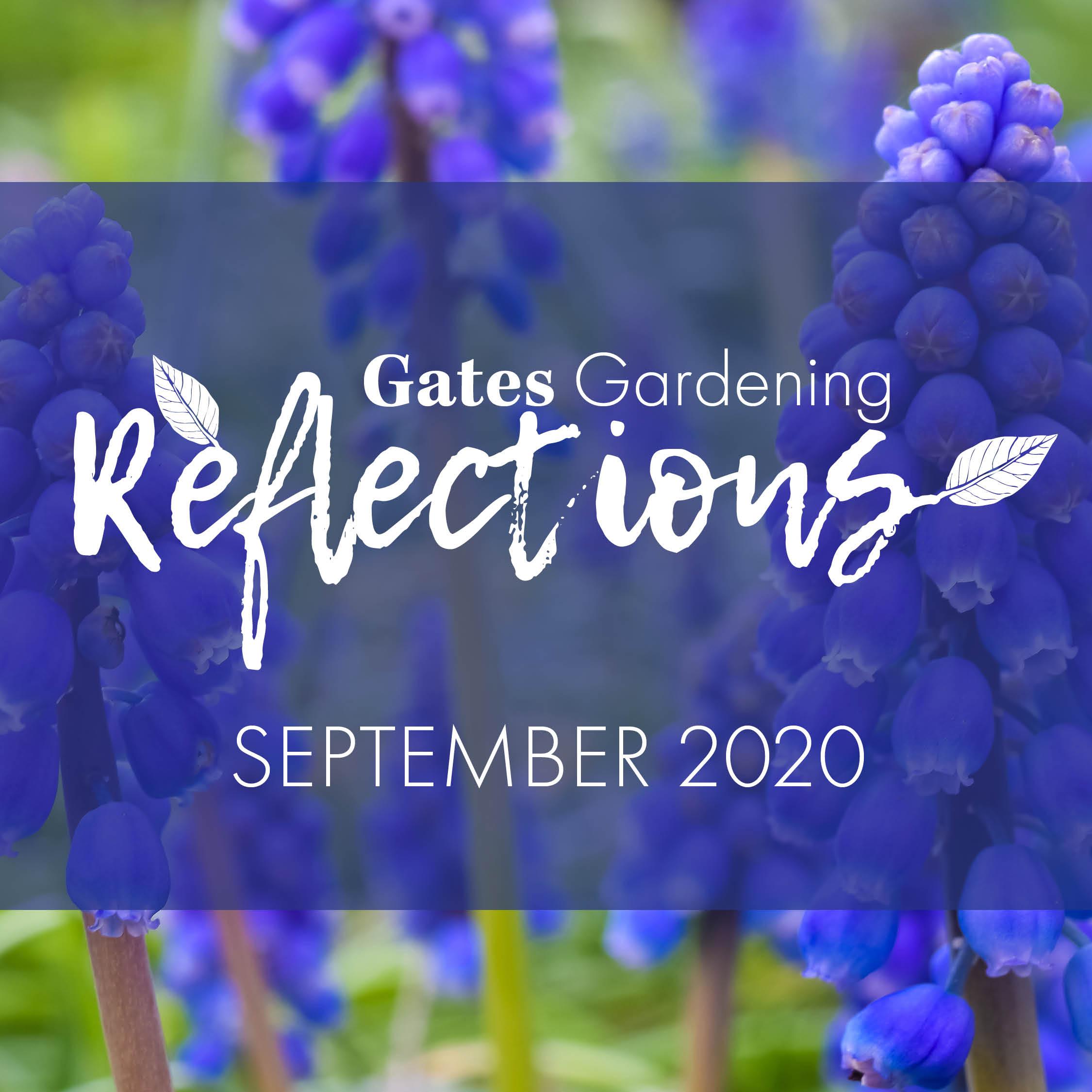 Gates Gardening Reflections September 2020