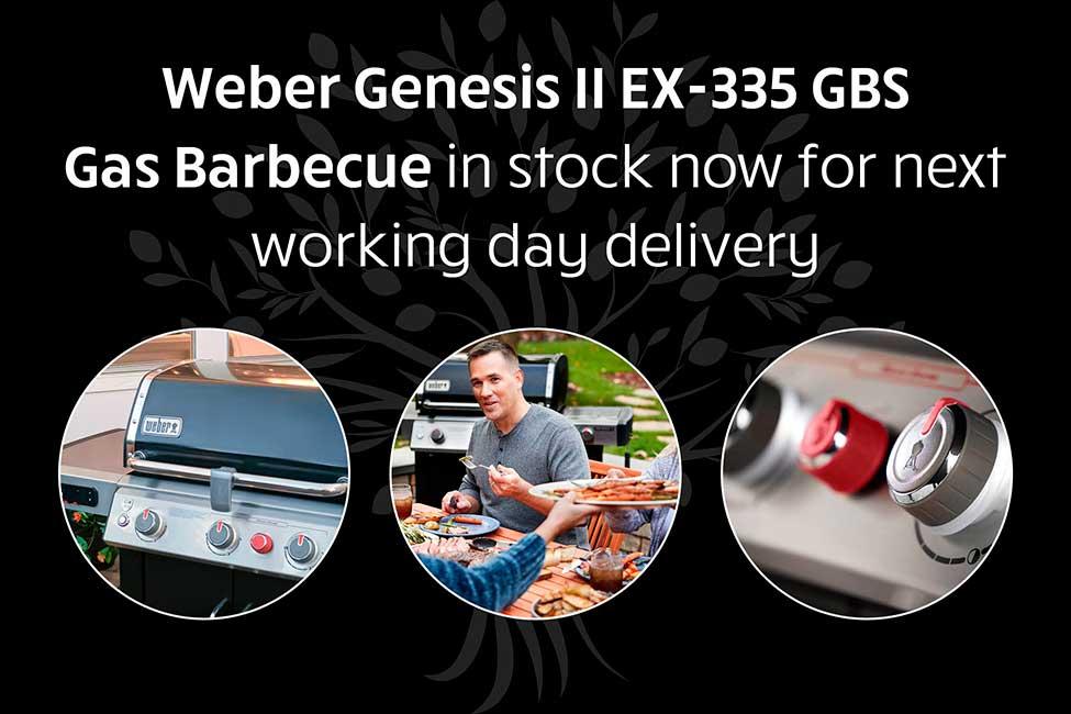 Weber EX-335 BBQ For Sale