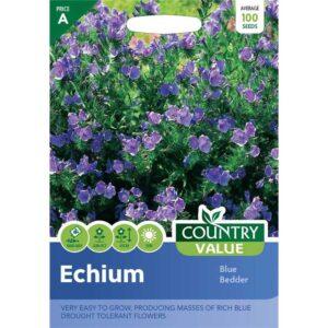 Country Value Echium Blue Bedder Seeds