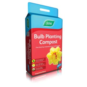 Westland Bulb Planting Compost 10L