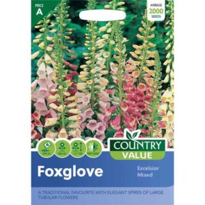 Country Value Foxglove Excelsior Mixed Seeds