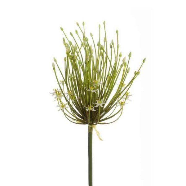 Cream Allium Double Flower Spray Stem (100cm)