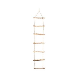 Lumineo LED Birch Ladder with Snow