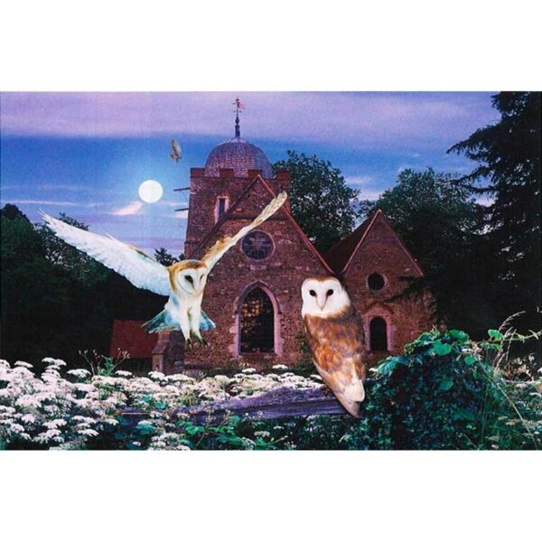 House of Puzzles On Silent Wings 1000 Piece Jigsaw Puzzle
