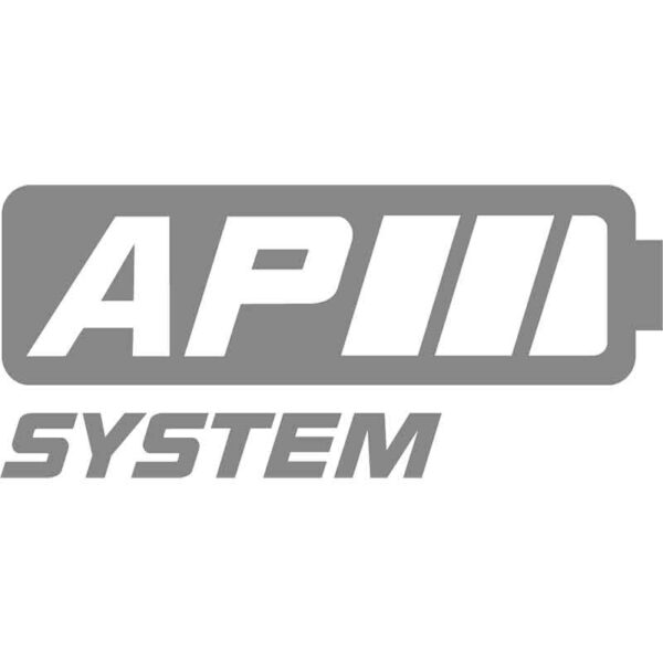 AP System