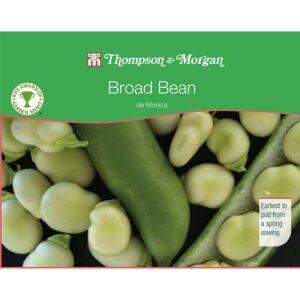 Thompson & Morgan Broad Bean de Monica Seeds