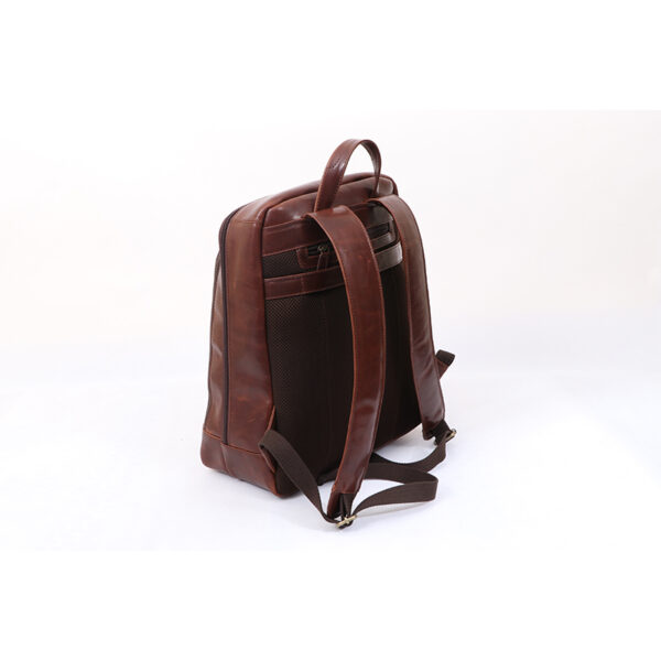 Ashwood Leather Men's Mayfair Laptop Business Rucksack Brown back 2