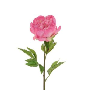 Floralsilk Fresh Touch Large Peony Stem (76cm)