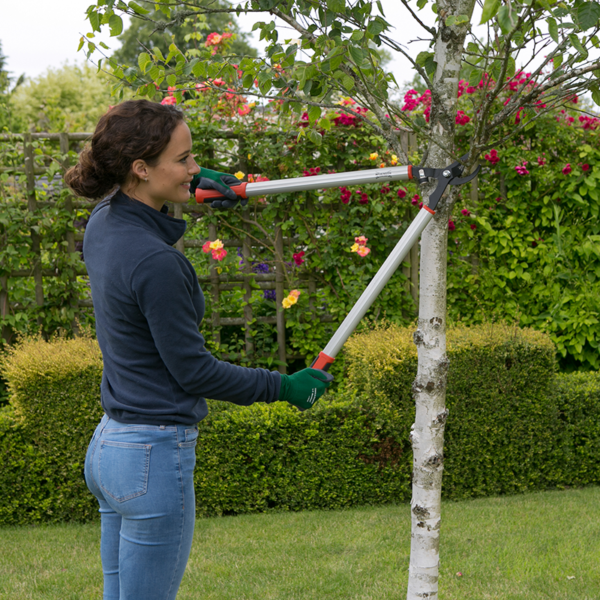 Using Wilkinson Sword Bypass Loppers (Cutting Capacity 30mm)