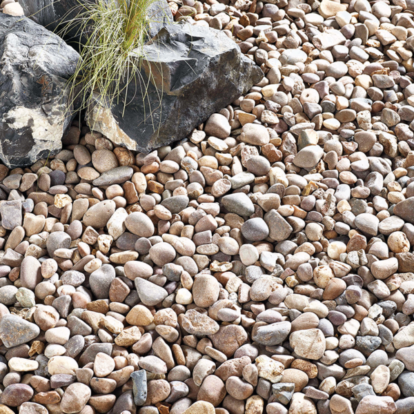 Coastal Pebbles Dry