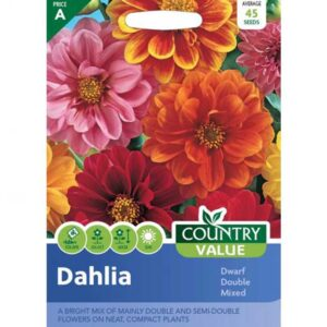 Country Value Dahlia Dwarf Double Mixed Seeds