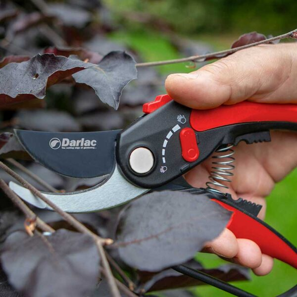 Darlac Adjustable Bypass Pruner Lifestyle