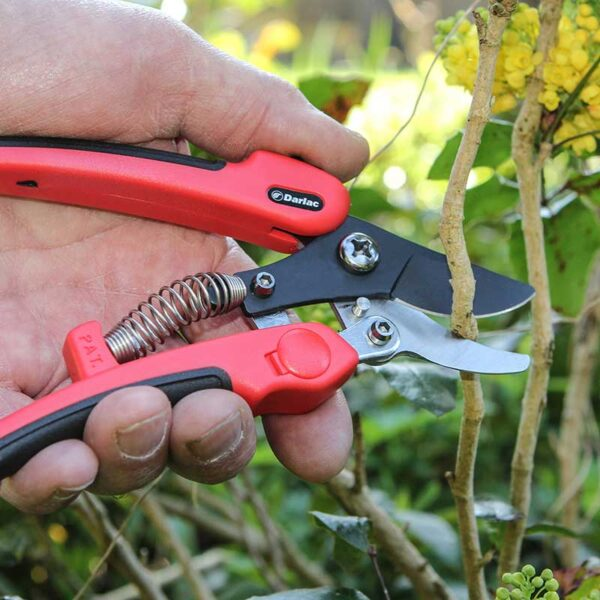 Darlac Compound Action Pruner Lifestyle