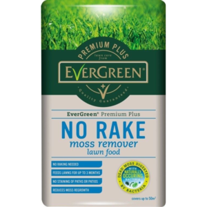 EverGreen No Rake Moss Remover