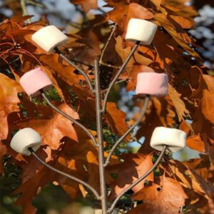 Firepits UK Marshmallow Fork
