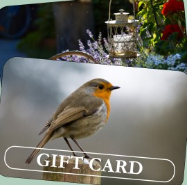 Gates Gift Cards Web Home Page_3