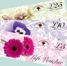 gates-gift-vouchers-web-home-page