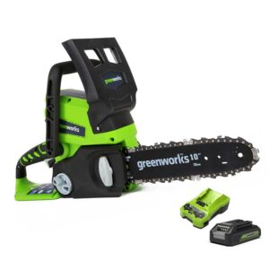 Greenworks 25cm Chainsaw With 2Ah Battery And Charger