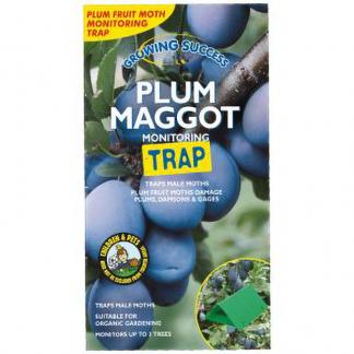 Growing Success Plum Maggot Monitoring Trap
