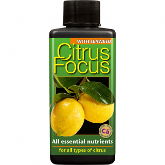 Growth Technology Citrus Focus 100 ml