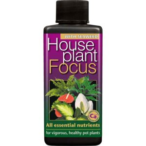 Growth Technology Houseplant Focus 100 ml