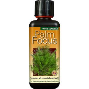 Growth Technology Palm Focus with Seaweed 300ml