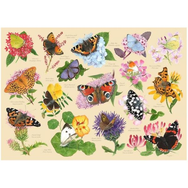 House of Puzzles Garden Butterflies 1000pc Jigsaw Puzzle Image