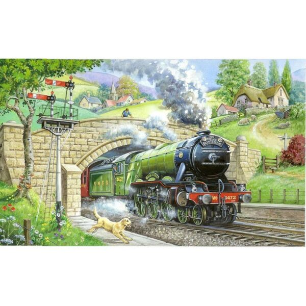House of Puzzles Train Spotting BIG 250pc