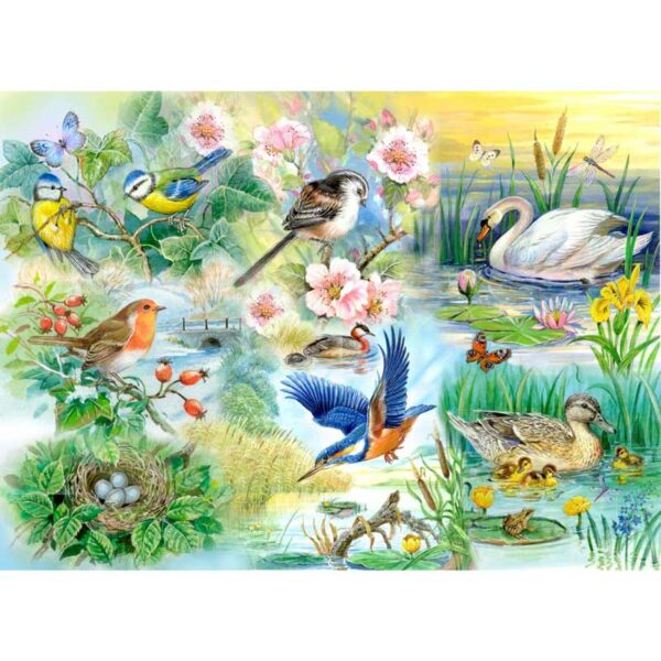 House Of Puzzles Feathered Friends Jigsaw Puzzle - Big 250 Piece