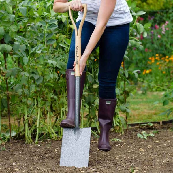 Kent & Stowe Carbon Steel Digging Spade in use