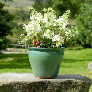 Naylor Clough Mill Leaf Conservatory Pot (Large)