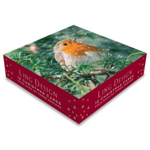 Ling Design Christmas Robins Pack of 12 Box
