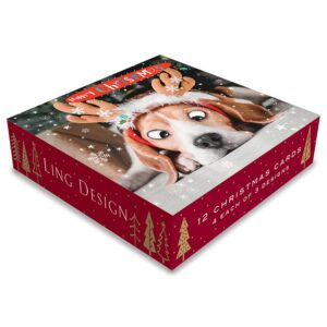 Ling Design Pawsome Christmas Box
