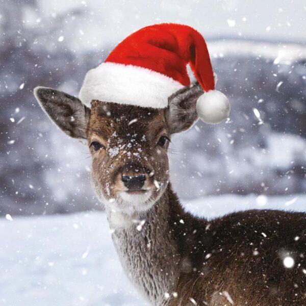 Ling Design Winter Wildlife 2