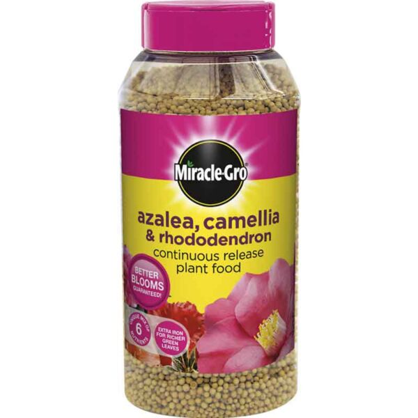 Miracle-Gro Azalea, Camellia & Rhododendron Continuous Release Plant Food (1kg)