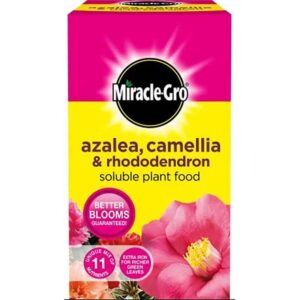 Miracle-Gro Azalea, Camellia & Rhododendron Soluble Plant Food (500g)