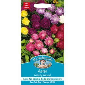 Mr Fothergill's Aster Milady Mixed Seeds