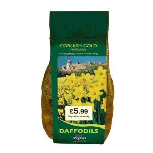 Narcissus 'Cornish Gold' Daffodils (2kg Bag)