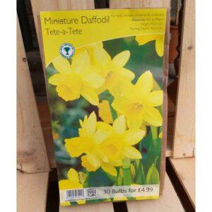 Miniature Daffodil 'Tete a Tete' (30 Bulbs)