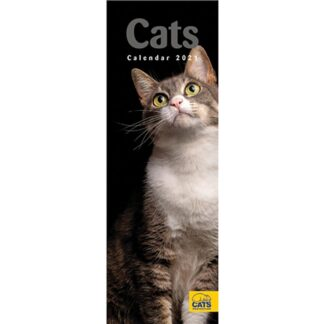 Otter House Cats Protection Slim Calendar 2021