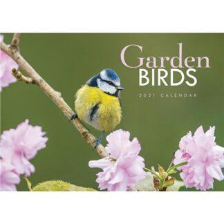 Otter House-Garden Birds A4 Calendar 2021