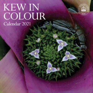 Otter House-Kew In Colour Wall Calendar 2021