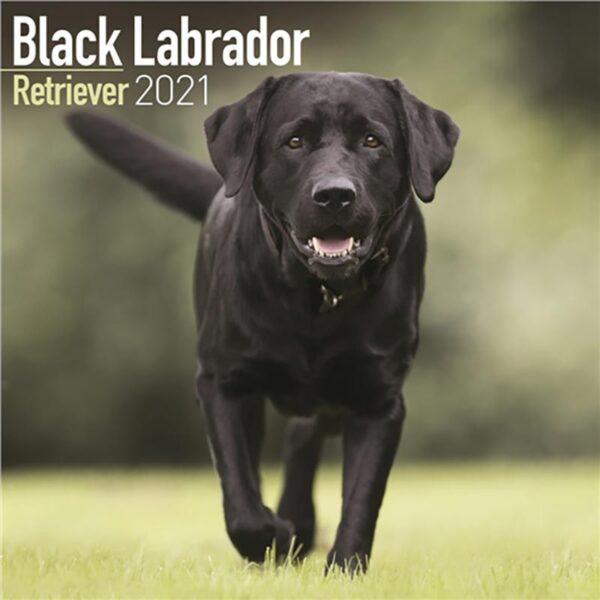 Otter House-Labrador Retriever Black Wall Calendar 2021