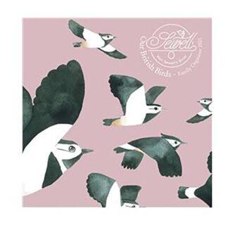 Otter House-Matt Sewells Our British Birds Wall Planner 2021