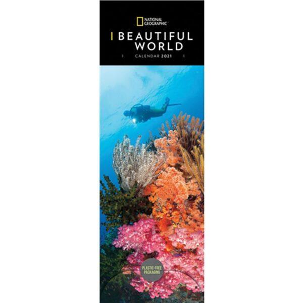 Otter House-National Geographic Beautiful World Slim Calendar 2021